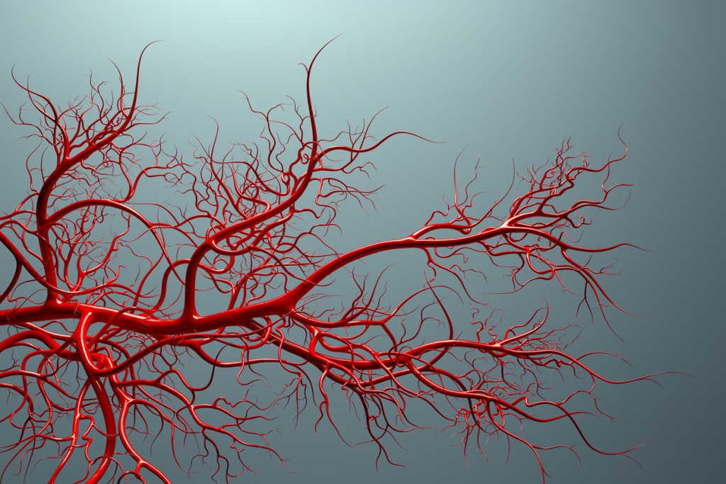 Smoking vein health